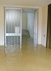 flooded carpet cleaning service adelaide
