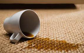 coffee stain removal adelaide