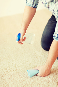 expert carpet cleaning services in adelaide